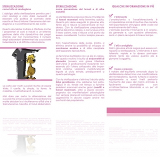 pieghevole_sterilizzazione_interno